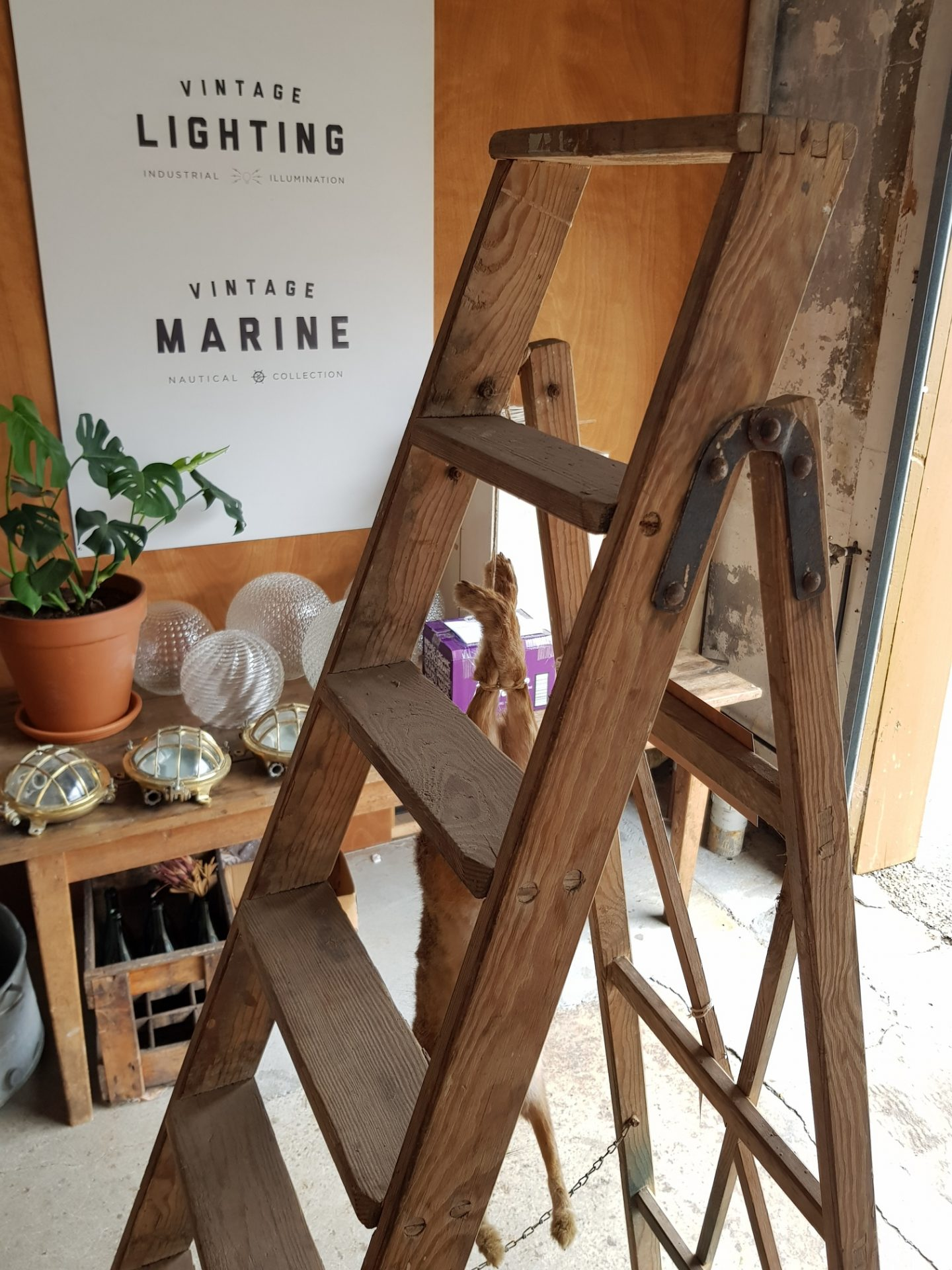 Painters ladder1