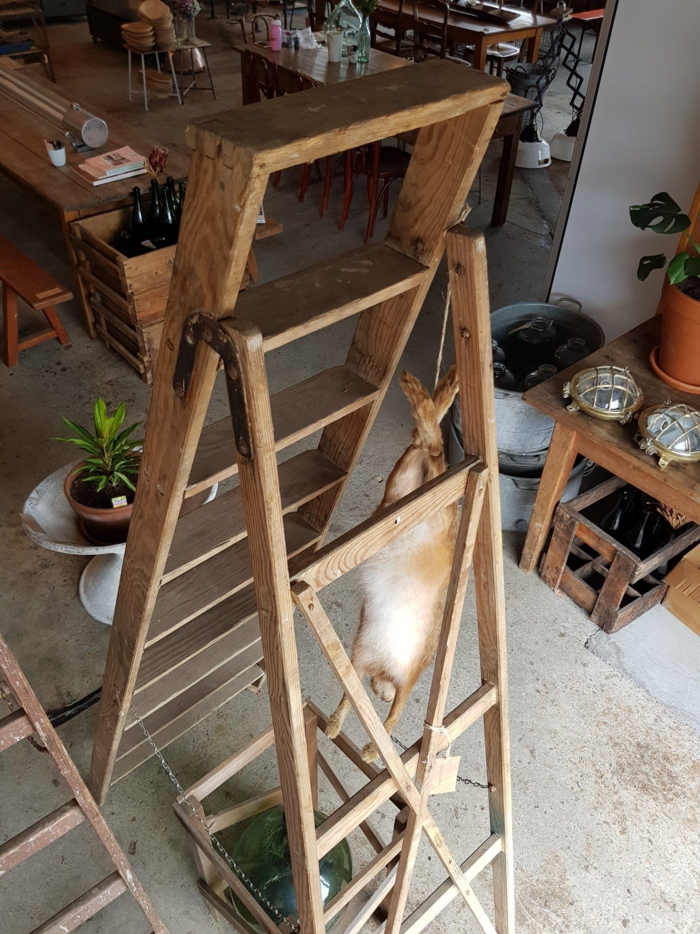 painters Ladder6