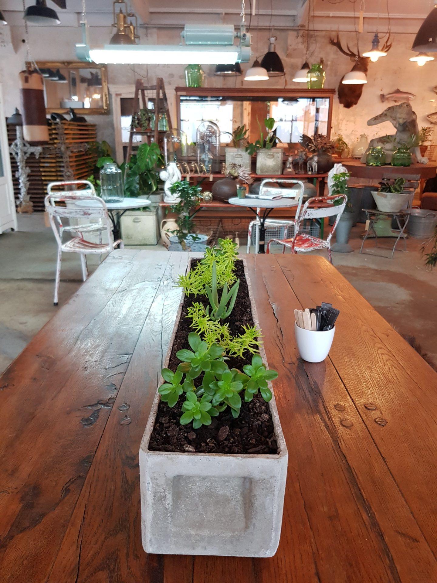 oblong-planter